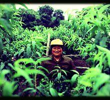 Lost in Green by eyesoftheeast