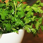 parsley_pot by momarch
