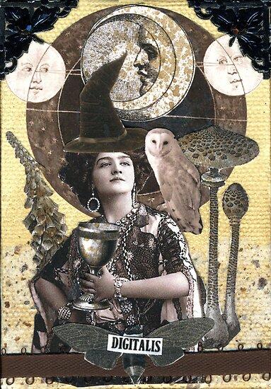 Witchcraft by WinonaCookie