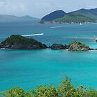 Trunk Bay, US Virgin Islands by TaraShu
