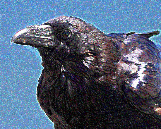 Profile of a Raven . Digital Interpretation by Wing Tong