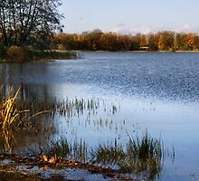 Fall in lake by Antanas