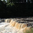 Aysgarth Falls In Full Force by Mark Dobson