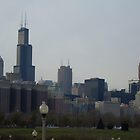 Chicago Skyline from Grant Park  by Felicia722