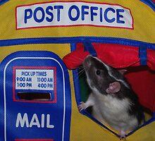 Post Office Rat by LOJOHA