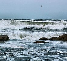 Sea Breeze by ShutterUp Photographics