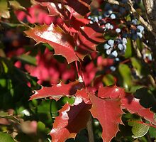 Leaves Are Red by Patty (Boyte) Van Hoff