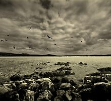Fated. by Keegan Wong