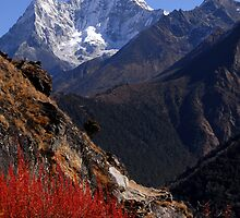 Ama Dablam by Richard  Stanley