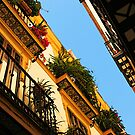 Spanish balconies by Dave McBride