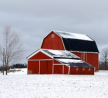 Blanketed Red Barn by GEMESQ