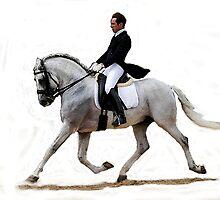Dressage Horse Study Portrait by Oldetimemercan