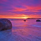 Moeraki Boulders New Zealand by Darren Newbery