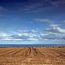 Golden Harvest on the Fife Coast - Scotland UK Europe by simpsonvisuals