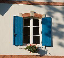 Window by Melanie PATRICK