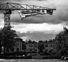 Crane by ambageo