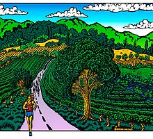 Runner in Wine Country by Phil Dynan