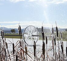 Frozen Irrigation Wheel by DonnaBoley
