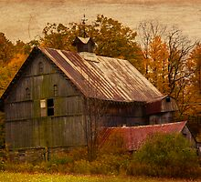 Old Barn by BigD