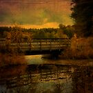 Autumn Bridge by Jigsawman