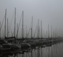 Foggy Morning at Marina by Tom-Sky