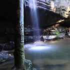 Buderim Waterfall QLD  by Debbie  Widmer