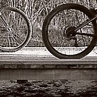Circle of Bike by Anna  Ellis