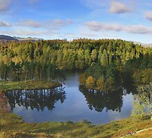 Tarn Hows by photoshotgun