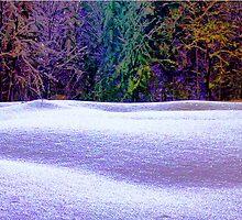 winter dream I by Patricia Ausweger Matz