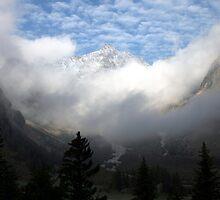 misty mountain by Cornelia Togea