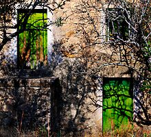 green doors, abandoned house in Monsanto, Beira Baixa, Portuga by Andrew Jones