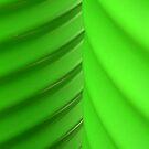 Green by Elizabeth McPhee