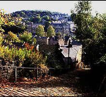 Footpath View Of Hebden Bridge by Jazzdenski