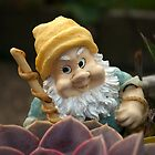 Sunnyboy the Garden Gnome by steppeland