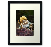 Sunnyboy the Garden Gnome Framed Print