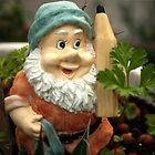 Doodlethumb the Garden Gnome by steppeland