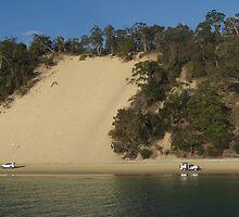 Sand Dunes of Moreton by landscapes