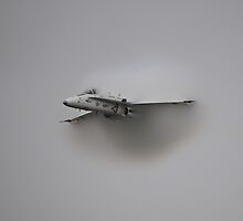Hornet Vapor by Andy Mueller