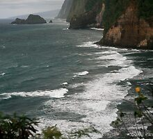 Pololu  Valley-North Shore of The Big Island by Randy Richards
