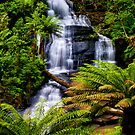 Triplet Falls by Phil Thomson IPA