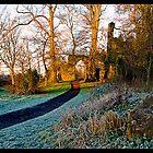 Walk in the Park by John Walsh, IRELAND