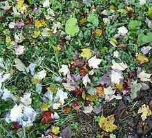 Autumn Carpet by artwhiz47