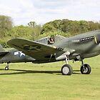 P40 Kittyhawk by airwolfhound