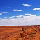 The Outback by Stephanie Stengel | stelonature photography