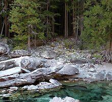 McDonald Creek by rocamiadesign