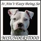 Misunderstood by Zdogs