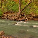 Haw Creek 1 by kittyrodehorst