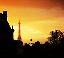 Dusk in Paris by STEPHANIE STENGEL | STELONATURE PHOTOGRAHY