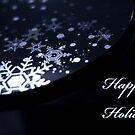 Happy Holidays by Fanboy30