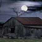 Moonshine Nights by billium